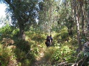 Algarve-Wandern-Wanderwoche-Monchique-Wanderweg