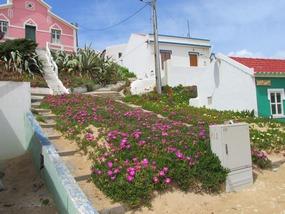 Wanderung bei Aljezur, Häuser am Praia Monte Clerigo