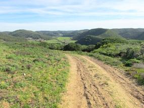 Foto: Wunderbare Hügellandschaft an der Westküste der Algarve