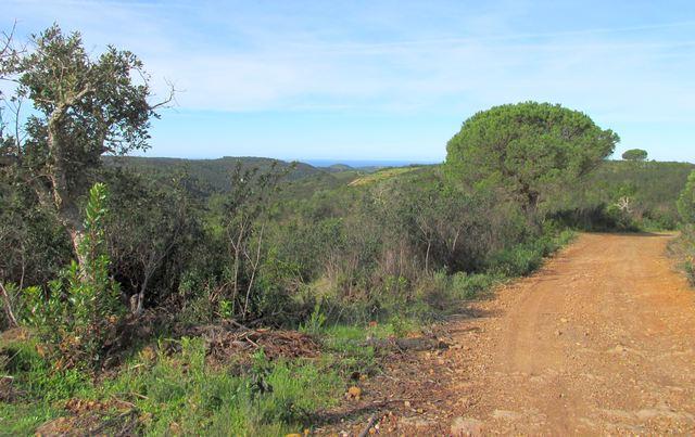 Foto: Blick über die Hügel zur Westküste