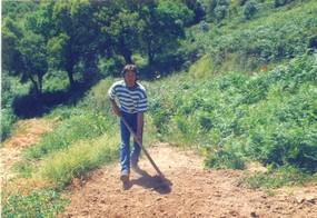 In-Portugal-an-der-Algarve-als-Landwirt