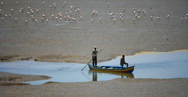 Foto: Fischer in der Ria Formosa bei Faro
