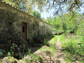 Foto: Portugal Algarve Monchique Wanderweg