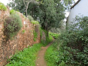 Foto: Schöner Wanderweg bei der Wanderung am Rocha da Pena