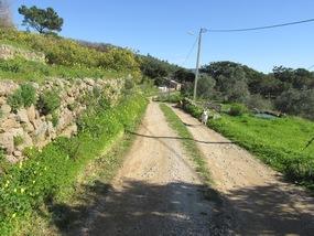 Wanderweg am Foia