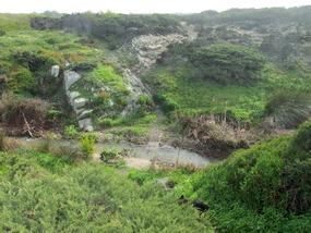 Wasserlauf auf der Rota Vicentina