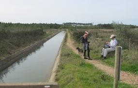Foto: Bewässerungskanal an der Westküste der Algarve