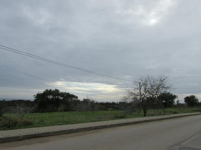 Wetterbericht-Algarve-Januar-2-2014