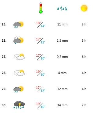 Grafik, Wetterbericht der vierten Novemberwoche