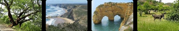 Algarve Wandern mit Uwe, die schönsten Wanderungen warten auf Dich