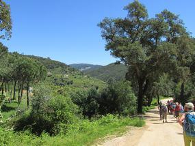 Zwischen den Hügeln im Monchiquegebirge