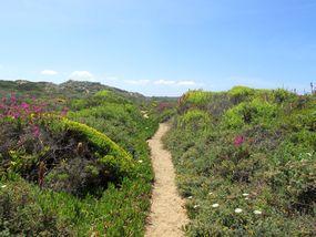 Wanderung an der Westküste der Algarve bei Aljezur
