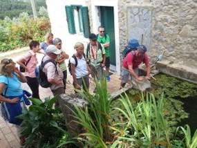 Wandern mit Uwe in Monchique zum Picota