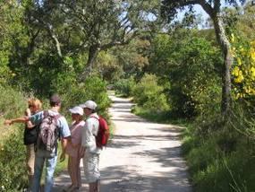 Geführte Wanderung in Monchique