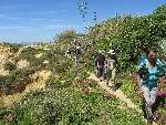 Foto Wanderung Armação de Pêra - Albufeira